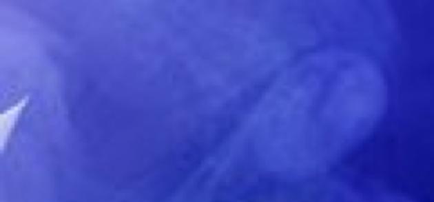 banner img